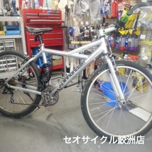 16-01-25-11-40-46-618_photo