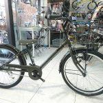 大人っぽい子供自転車 ブリヂストン ビッケJ 22インチ